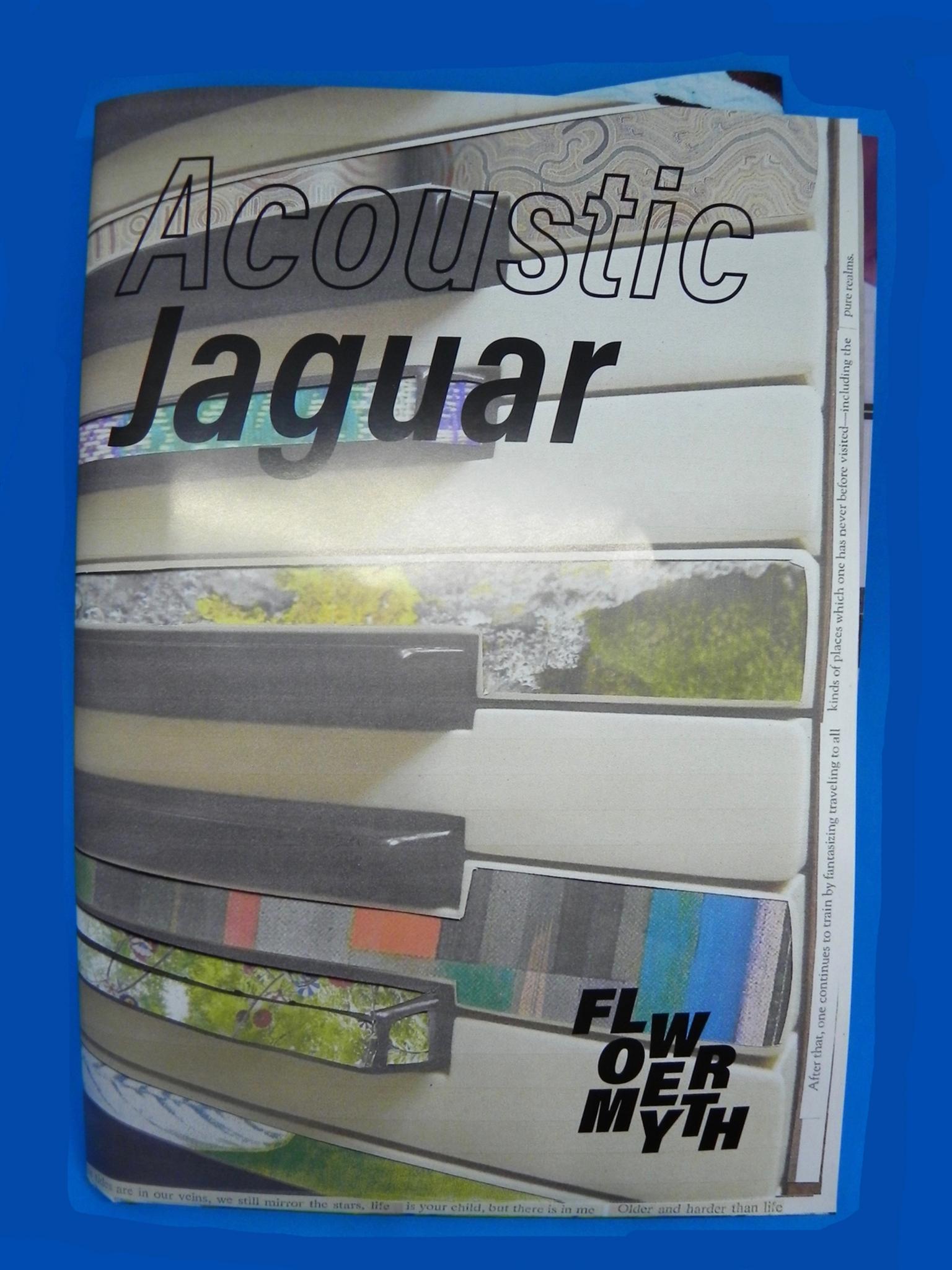 Acoustic Jaguar Volume 1